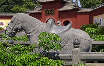 Luoyang Classic One Day Tour