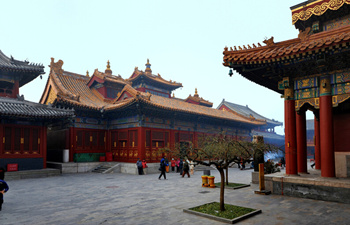 Beijing Bus Tour: 1 Day Ancient Beijing & New Olympic Tour
