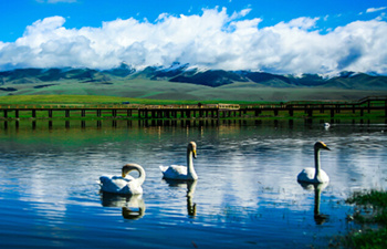 13 Days In-depth Xinjiang Small Group Tour