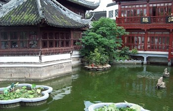 Best Shanghai Day Tour