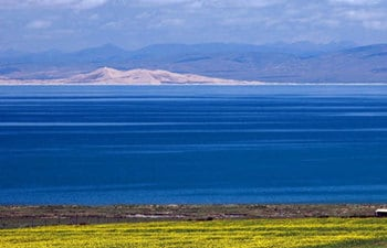 One Day Qinghai Lake Tour