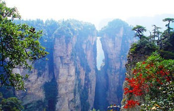 Tianmen Mountain & Yuanjiajie Day Tour