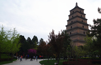 2 Days Xian Exploration Tour