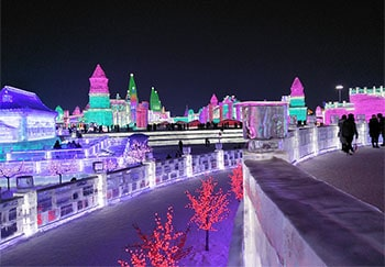 Best Harbin Day Tour Including Northeast Tiger Park and Harbin Ice & Snow World