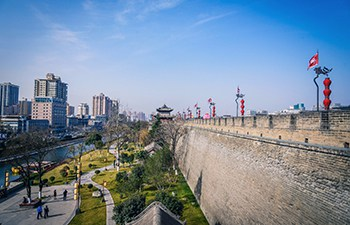 1 Day Terracotta Army & City Wall Group Tour