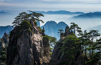 2 Days Mt Huangshan Bus Tour