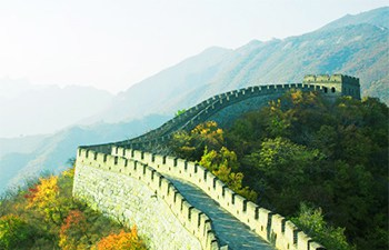 3 Days Beijing Xian Tour from Tianjin Port: Great Wall and Terracotta Warriors