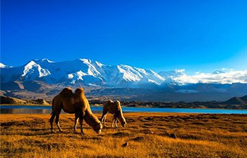 13 Days Silk Road Adventure Tour from Chengdu to Kashgar