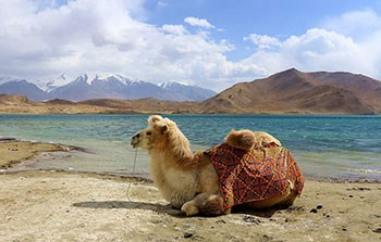 6 Days Xinjiang Culture-tracing Tour of Urumqi-Kashgar-Tashkurgan