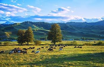Best 10 Days Northern Xinjiang Scenic Tour