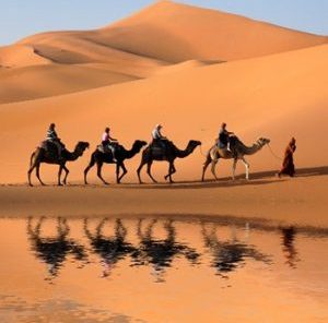 5 Days Zhangye Dunhuang Tour by High-speed Train