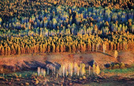 Best Places to Photograph Autumn in Yunnan