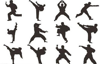 The History of Chinese Martial Arts