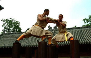 The Shaolin Wushu or Shaolin Boxing
