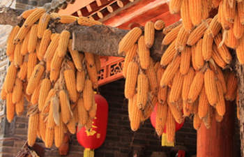 Yuanjiacun Village Folk Culture and Food Day Tour