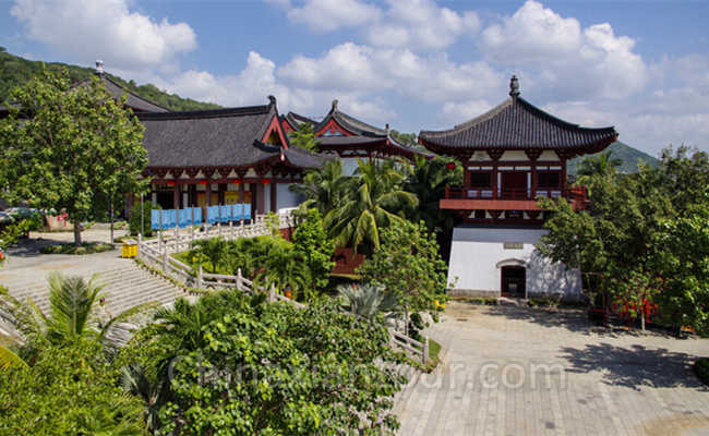 One Day Nanshan Buddhism Culture Park Tour