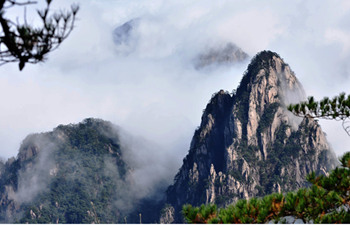 One Day Mt Huangshan Bus Tour