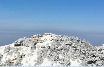 Heart-taking Snowcape of Mt Huashan Taken by Visitor