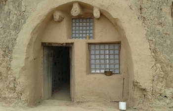 Terracotta Warriors and Cave Houses Tour